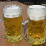 ビール醸造について〜下面発酵と上面発酵〜を知ろう