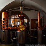 【人気】ドイツのクラフトビール事情を知りたい!
